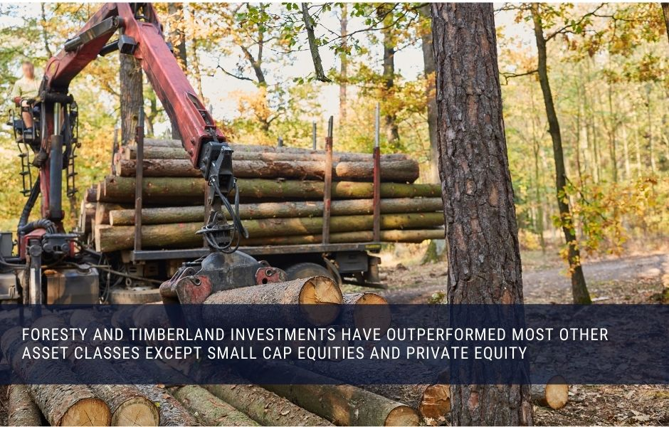 Timberland and forestry investment have outperformed most other asset classes in the long term