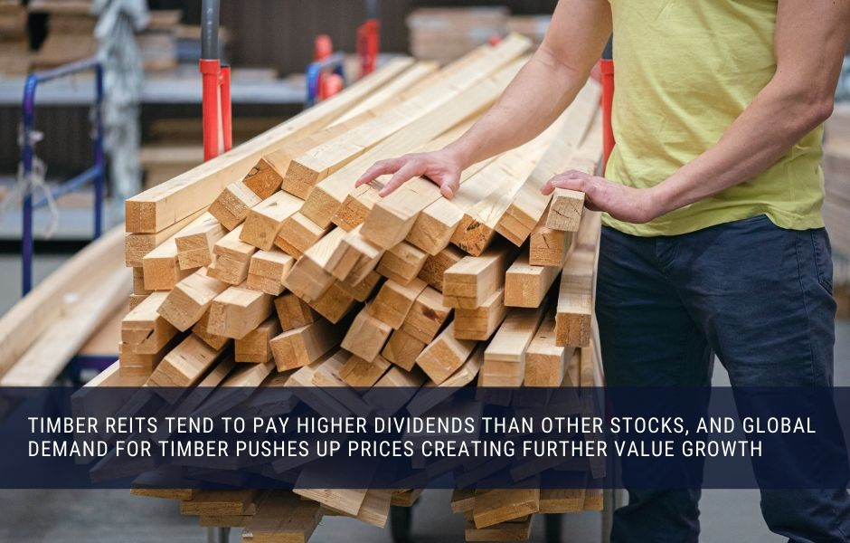 Timber REITs tend to pay higher dividends than other stocks